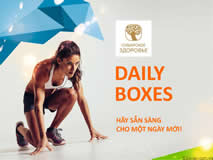 Daily Boxes